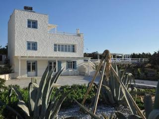 Blue Villas   Ambassador   Luxury Villa - Naoussa vacation rentals