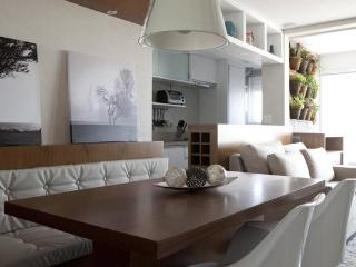 Beautiful 1 bedroom Sao Paulo Condo with A/C - Sao Paulo vacation rentals