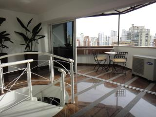 Adorable Condo in Sao Paulo with A/C, sleeps 2 - Sao Paulo vacation rentals
