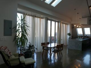 Beautiful 3-bedroom with terrace - New York City vacation rentals