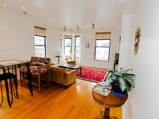 Great Old Town 2br - Chicago vacation rentals