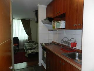Santiago Downtown Studio Apartments - Santiago vacation rentals