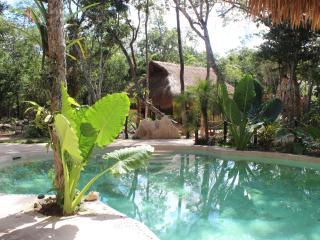 Brand new Delux Cabana Jaguar! - Macario Gomez vacation rentals