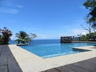 Tropical Beach House with Infinity Pool! - Tambor vacation rentals