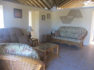 No crowds, secluded beaches, diving, whale watching - Jacmel vacation rentals