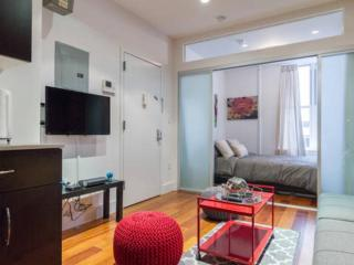 Beautiful Designer 1BED Sleeps 4!! - New York City vacation rentals
