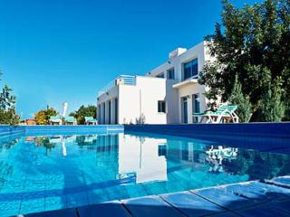 VILLA LORANE a LUXURY  3 Bedroom Villa with Large Private pool & WiFi - Ayios Amvrosios vacation rentals