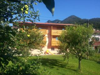 Apartment MASERA 204 - Kobarid vacation rentals
