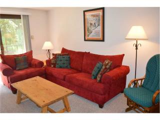 Beaver Village Condominiums #0222 - Winter Park vacation rentals