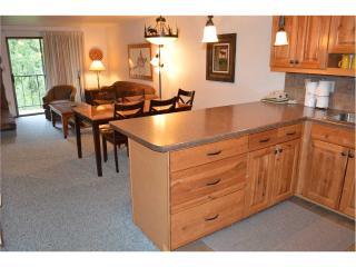 Beaver Village Condominiums #0422 - Winter Park vacation rentals