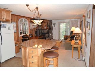 Beaver Village Condominiums #0513 - Silver Plume vacation rentals