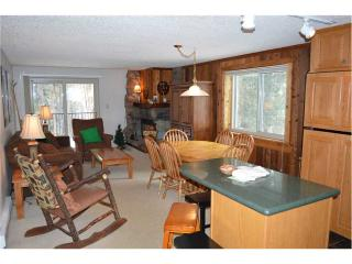 Beaver Village Condominiums #0514 - Silver Plume vacation rentals