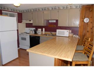 Beaver Village Condominiums #0521 - Silver Plume vacation rentals