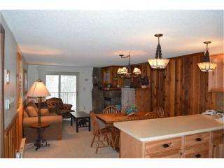 Beaver Village Condominiums #0922R - Winter Park vacation rentals