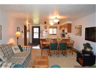 Beaver Village Condominiums #1523R - Winter Park vacation rentals