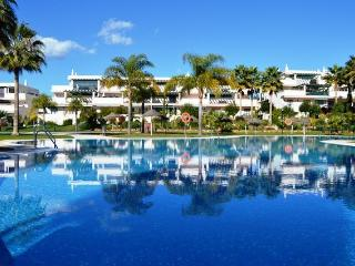 LOCRIMAR PHASE TRIP ADVISOR APPROVED - Nueva Andalucia vacation rentals