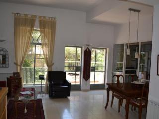 Gdud Haivri 3 BD - Gedera vacation rentals