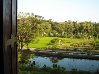 Alamkita Homestay : River - Ricefields - Sleman vacation rentals