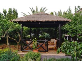 Lovely 3 bedroom Vacation Rental in Arafo - Arafo vacation rentals