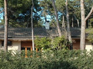 Villa Francesca C - Lignano Riviera vacation rentals
