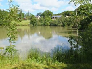 Blagdon Farm - Chaffinch - Ashwater vacation rentals