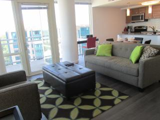 Lux Spring Hill 2BR w/Pool, WiFi - McLean vacation rentals