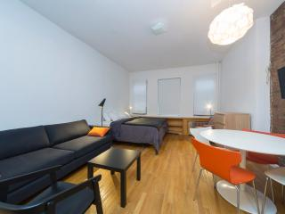 Sleeps 5! 0 Bed/1 Bath Apartment, Times Square, Awesome! (8102) - Manhattan vacation rentals