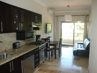 Affordable Lux Beach Condo - Cabarete vacation rentals