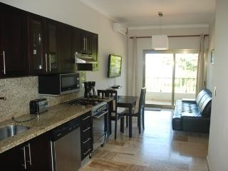 E&J Beach Condos - Cabarete vacation rentals