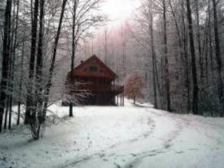 Quiet Splendor - Image 1 - Lansing - rentals
