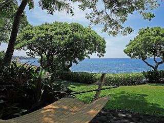Alii Honu Kai - Kalaoa vacation rentals