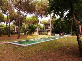 Villa Versilia - Marina dei Ronchi vacation rentals