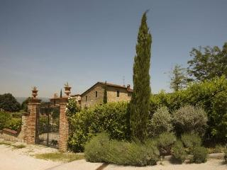 Villa Anetta - Monsummano Terme vacation rentals