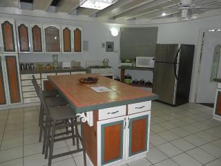 #2 Apt - Luxury 3-Bedroom - Kingston vacation rentals