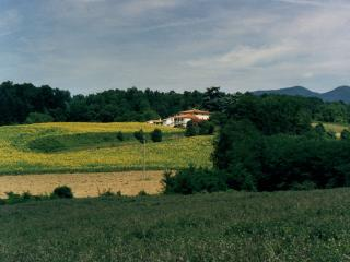 Charming Farmhouse Barn with Internet Access and Shared Outdoor Pool - Borgo San Lorenzo vacation rentals