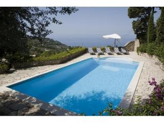 CAPRI-LUXURY VILLA WITH PRIVATE SWIMMING POOL-WIFI - Capri vacation rentals