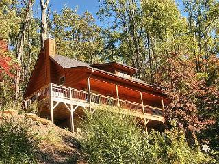 Perfect 2 bedroom Black Mountain House with Deck - Black Mountain vacation rentals