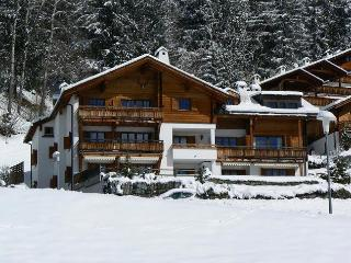 Stunning apartment perfect for winter and summer - Laax vacation rentals