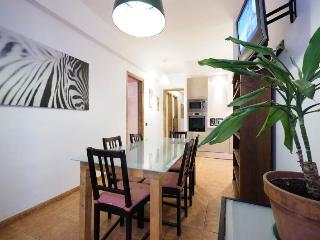 Vidre Home Plaza Real - Las Ramblas 4 br/3bath apt - Barcelona vacation rentals