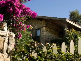 Seki Cottages, Mediterranean Home with pool - Evrenseki vacation rentals