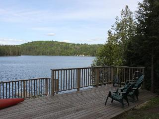 Treetop Cottage on Forest Lake - Burks Falls vacation rentals