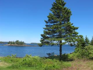 Charming House with Internet Access and DVD Player - Owls Head vacation rentals