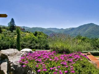 Lovely 1 bedroom Borgo a Mozzano Condo with Internet Access - Borgo a Mozzano vacation rentals