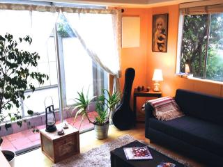 homey apartment close to the beach - Los Angeles vacation rentals
