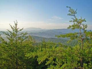 Eagle's View Cabin with Mountain View in Tennessee - Pigeon Forge vacation rentals
