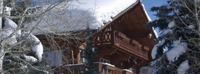 Senner Chalet - Steamboat Springs vacation rentals