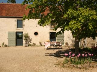 Bright Gite with Television and Microwave - Germigny-des-Pres vacation rentals