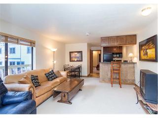 Boomerang Village #201 - Telluride vacation rentals