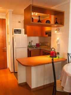 Nusa Santiago APTS (Miraflores) - Fully Furnished - Santiago vacation rentals