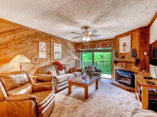 Ski Inn 225 - Steamboat Springs vacation rentals
